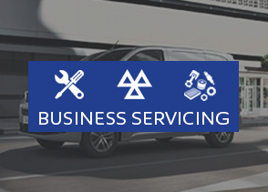 Business Servicing